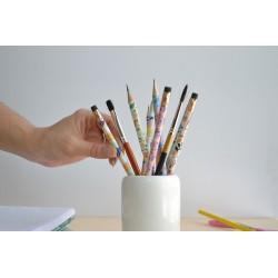 Lapiz con Diseños de Autor