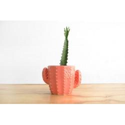 Maceta de Cerámica Cactus Grande